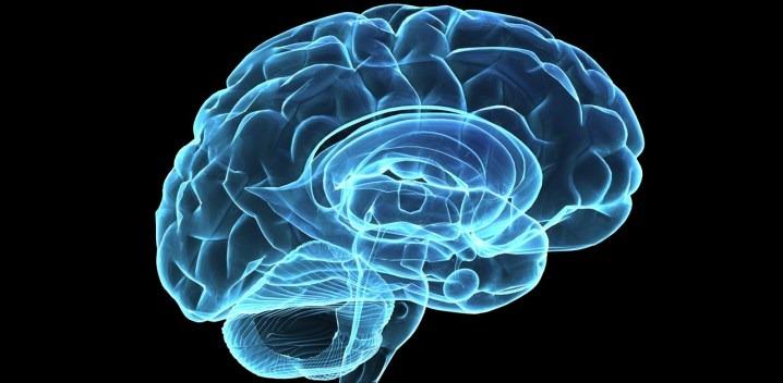 Image result for Psychological Factors in Investing